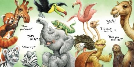 celebrate-picture-books-picture-book-review-fiona-the-hippo-zoo-animals