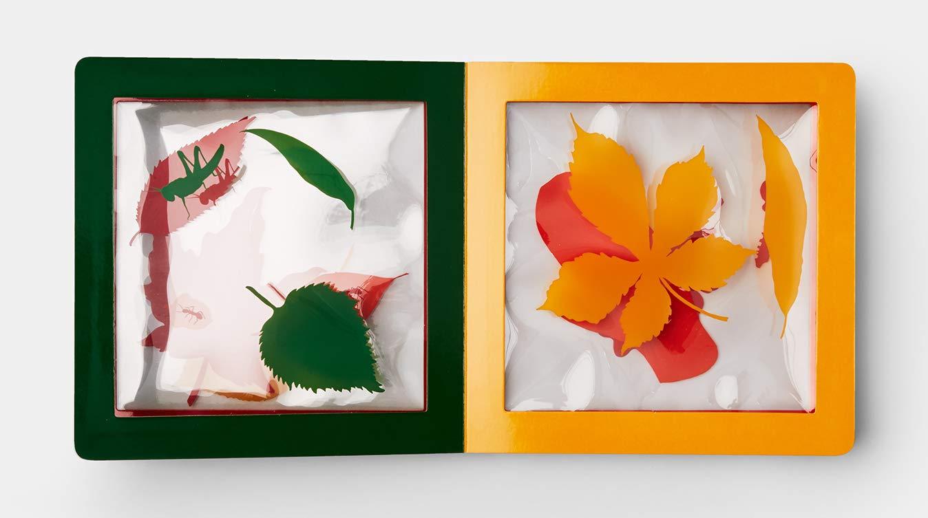 celebrate-picture-books-picture-book-a-pile-of-leaves-birch