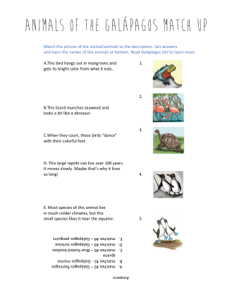 celebrate-picture-books-picture-book-review-animals-of-the-galapagos-match-up-puzzle