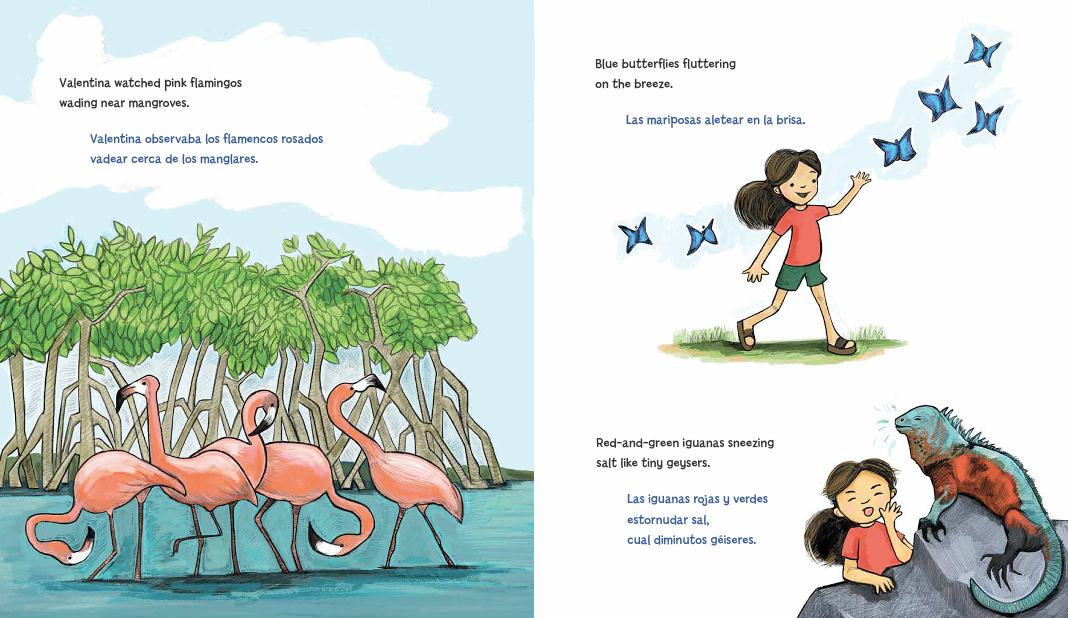 celebrate-picture-books-picture-book-review-Galápagos-Girl-iguana