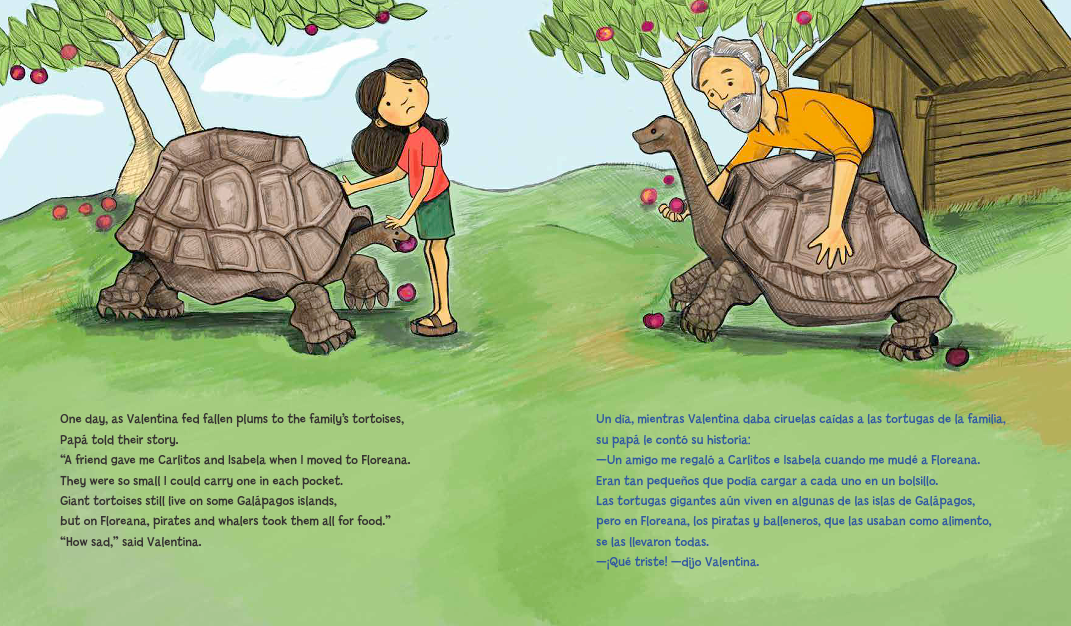 celebrate-picture-books-picture-book-review-Galápagos-Girl-tortoises