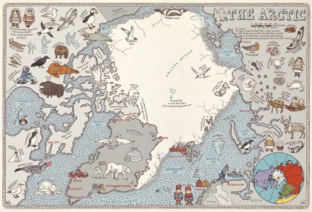 celebrate-picture-books-picture-book-review-maps-the-arctic