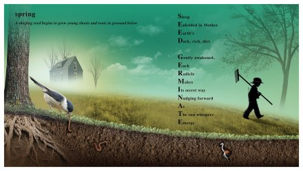 celebrate-picture-books-picture-book-review-poetree-spring-seed