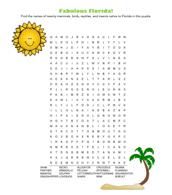 celebrate-picture-books-picture-book-review-fabulous-florida-word-search-puzzle