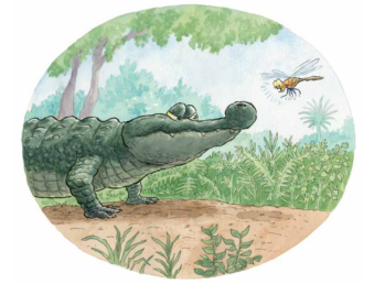 celebrate-picture-books-picture-book-review-there-was-an-old-gator-who-swallowed-a-moth-last-moth