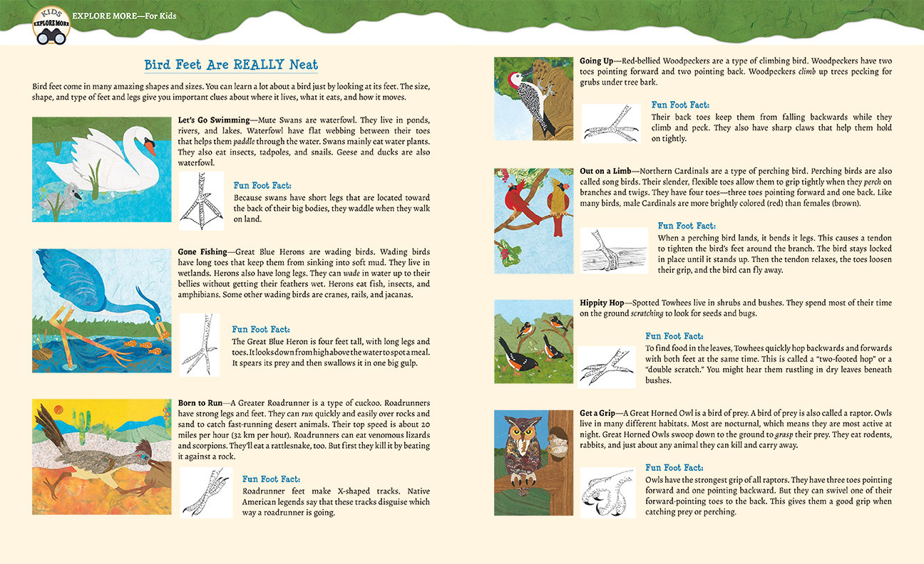celebrate-picture-books-picture-book-review-paddle-perch-climb-back-matter