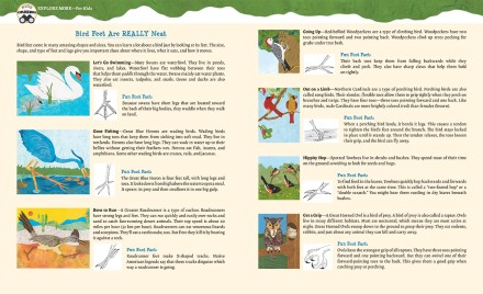 celebrate-picture-books-picture-book-review-paddle-perch-climb-back-matter