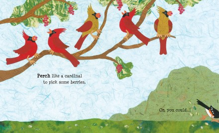celebrate-picture-books-picture-book-review-paddle-perch-climb-cardinals