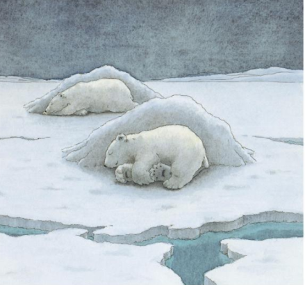 celebrate-picture-books-picture-book-review-the-little-polar-bear-sleeping