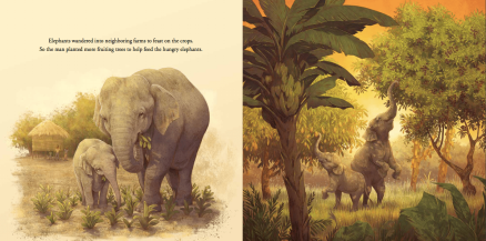 celebrate-picture-books-picture-book-review-the-boy-who-grew-a-forest-elephantscelebrate-picture-books-picture-book-review-the-boy-who-grew-a-forest-elephants