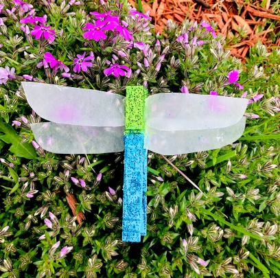 celebrate-picture-books-picture-book-review-dragonfly-craft