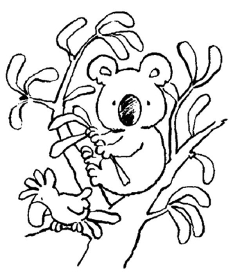 celebrate-picture-books-picture-book-review-koala-coloring-page