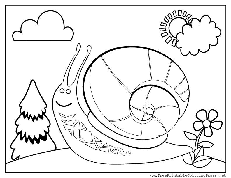 celebrate-picture-books-picture-book-review-snail-coloring-page
