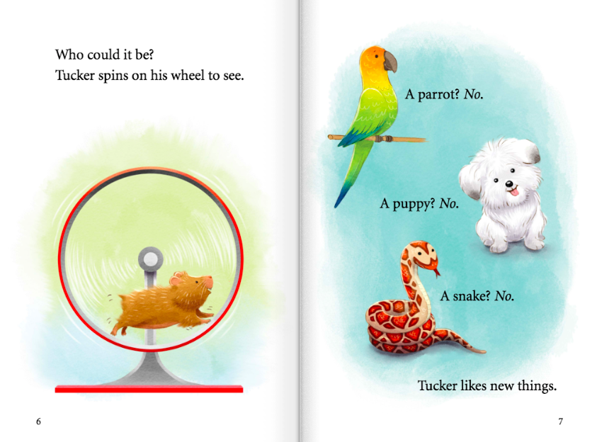 celebrate-picture-books-picture-book-review-tip-and-tucker-road-trip-pets