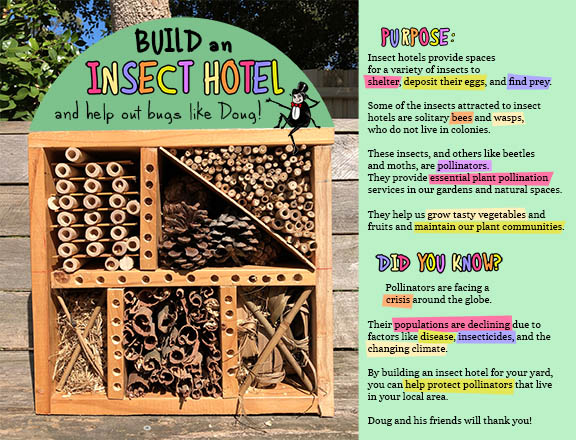 celebrate-picture-books-nature's-giants-insect-hotel-craft