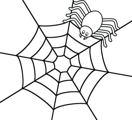 celebrate-picture-books-picture-book-review-spider-coloring-page