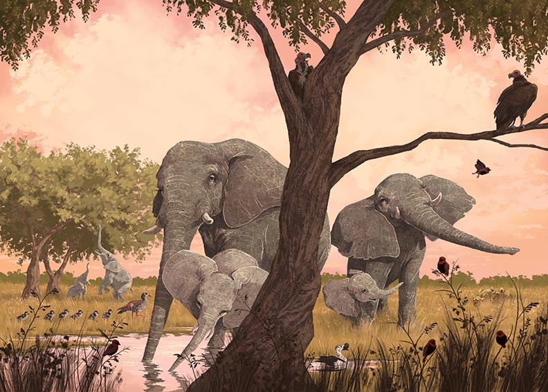 celebrate-picture-books-picture-book-review-our-elephant-neighbors-elephant-family