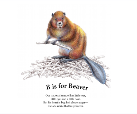 celebrate-picture-books-picture-book-review-c-is-for-canada-aruroa-beaver