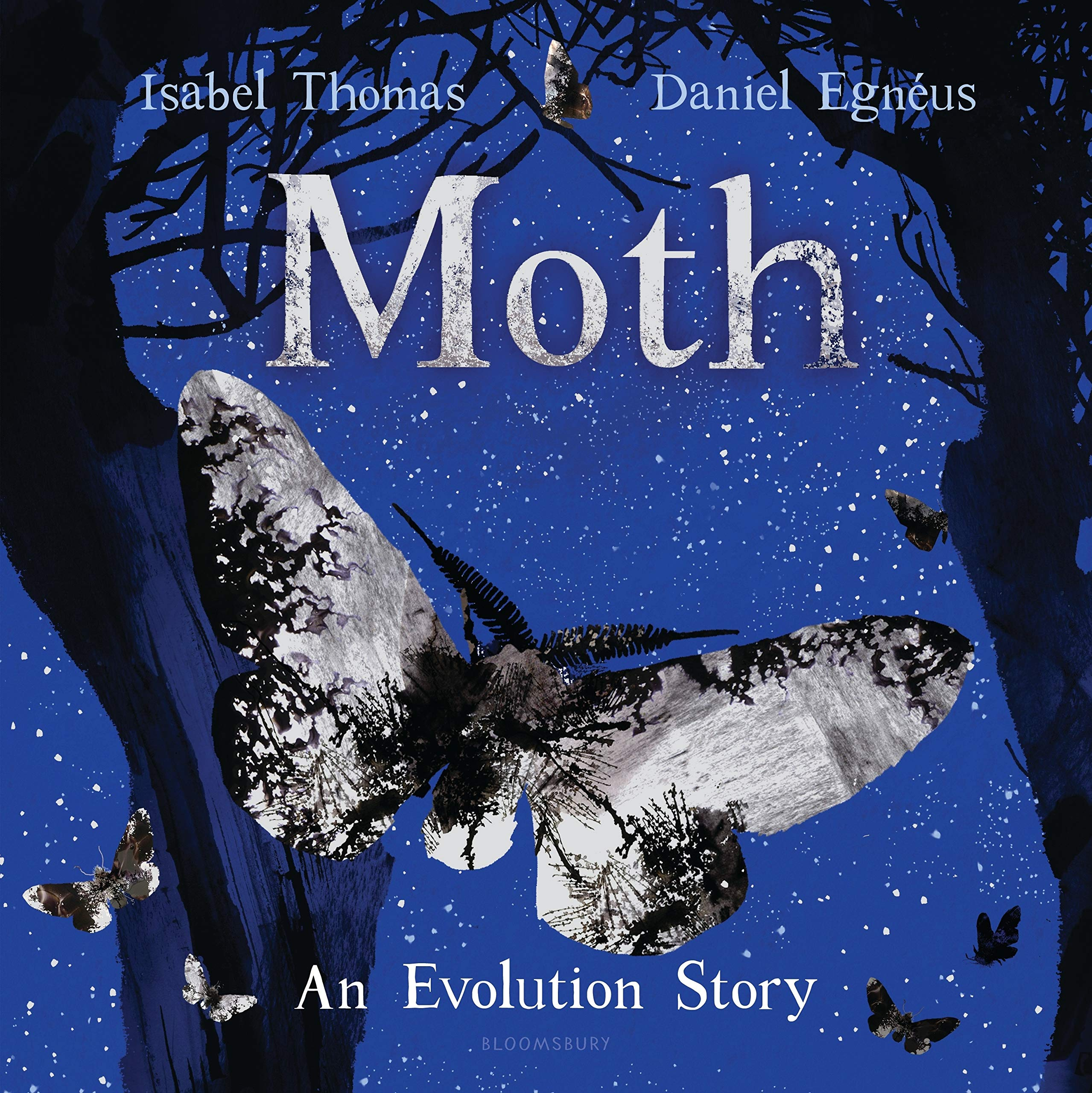 celebrate-picture-books-picture-book-review-moth-an-evolution-story-cover
