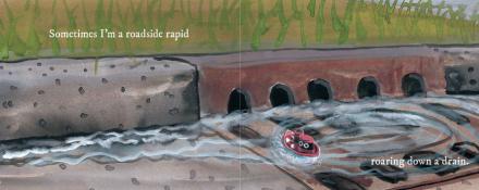 celebrate-picture-books-picture-book-review-I-am-the-rain-rapid
