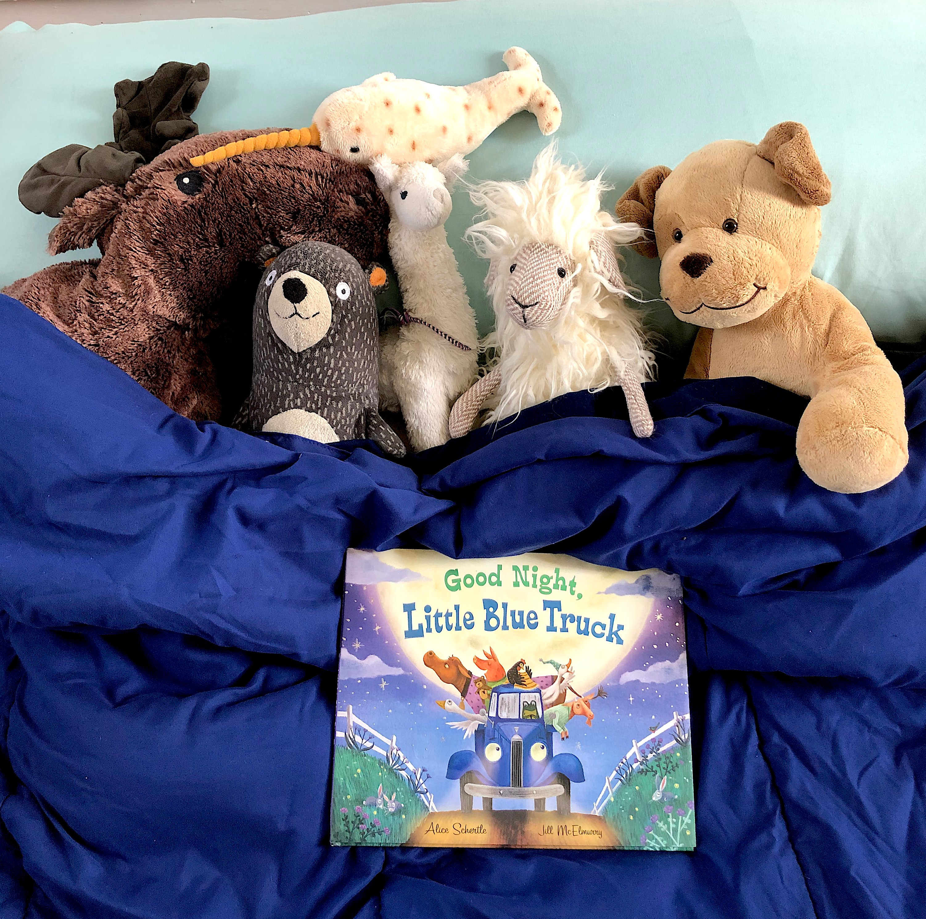 celebrate-picture-books-picture-book-review-good-night-little-blue-truck-pajama-party-sleeping