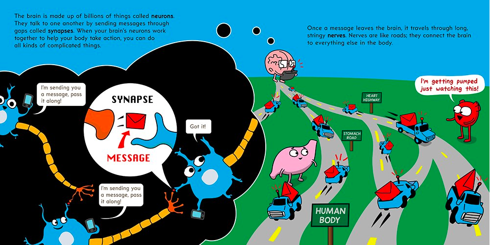 celebrate-picture-books-picture-book-review-the-brain-is-kind-of-a-big-deal-nervous-system