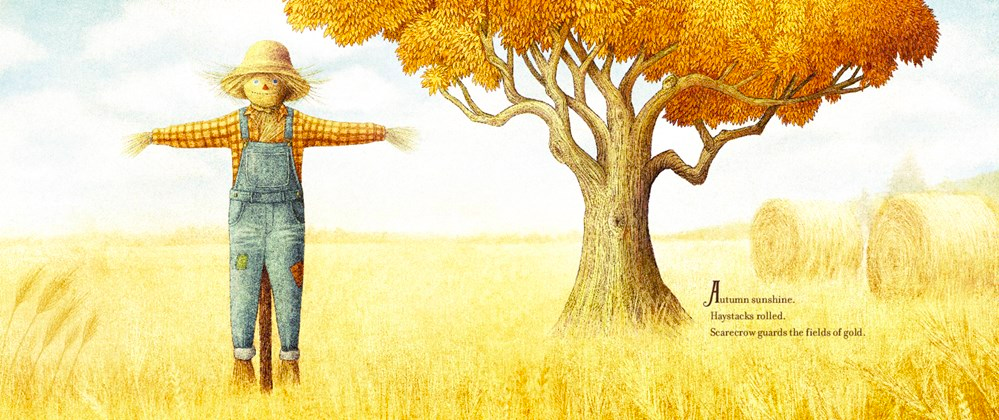 celebrate-picture-books-picture-book-review-the-scarecrow-autumn