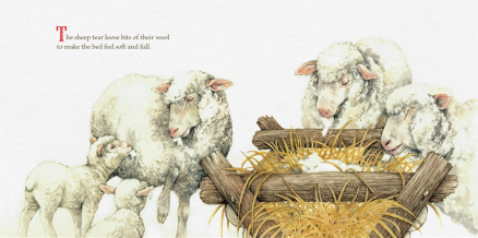 celebrate-picture-books-picture-book-review-the-gifts-of-the-animals-sheep