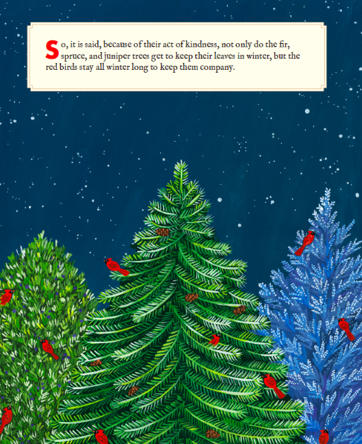 celebrate-picture-books-picture-book-review-why-evergreens-keep-their-leaves-kindness