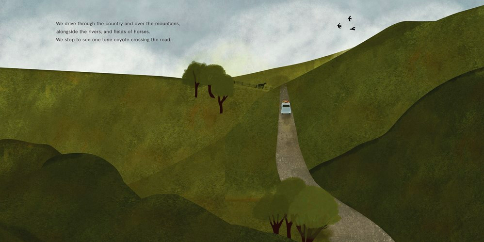 celebrate-picture-books-picture-book-review-birdsong-driving
