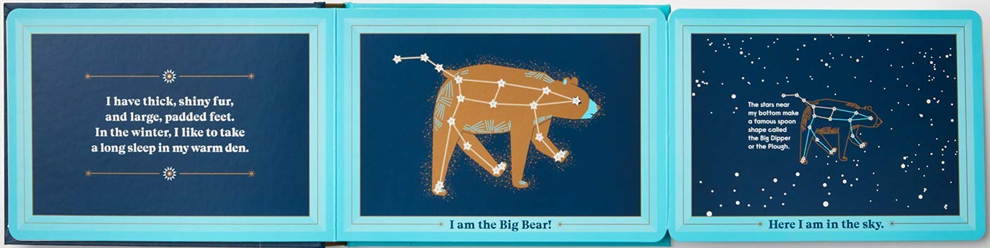 celebrate-picture-books-picture-book-review-animals-in-the-sky-bear-gate-fold