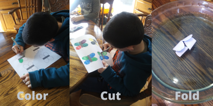 celebrate-picture-books-picture-book-review-the-very-impatient-caterpillar-craft