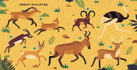 celebrate-picture-books-picture-book-review-extinct-athletes