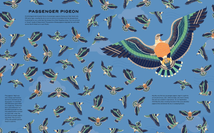 celebrate-picture-books-picture-book-review-extinct-passenger-pigeon