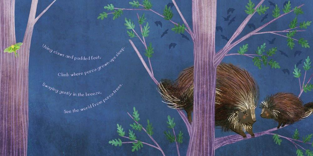 celebrate-picture-books-picture-book-review-you-are-mine-porcupine-tree