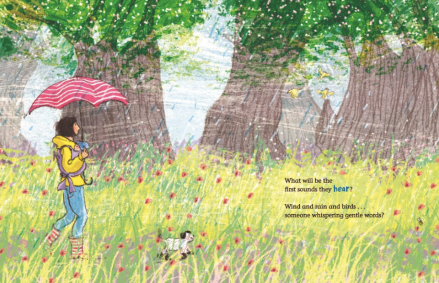 celebrate-picture-book-review-world-so-wide-field