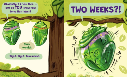celebrate-picture-books-picture-book-review-the-very-impatient-caterpillar-two-weeks
