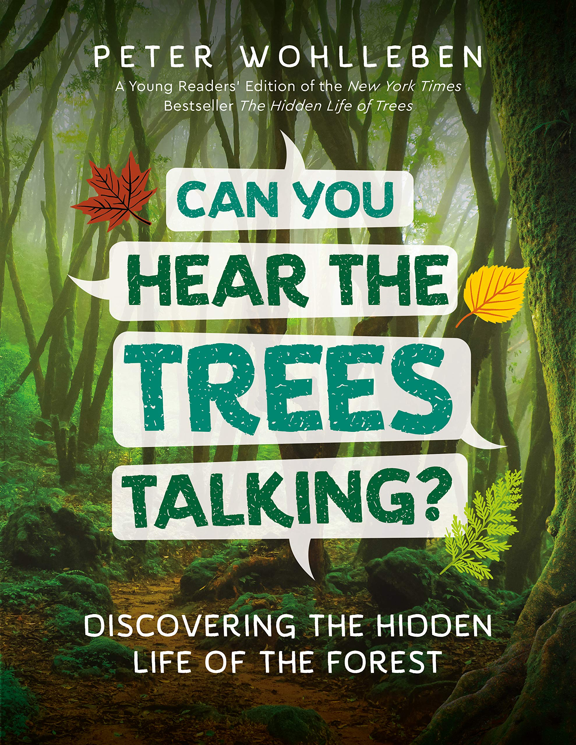 celebrate-picture-books-picture-book-review-can-you-hear-the-trees-talking-cover