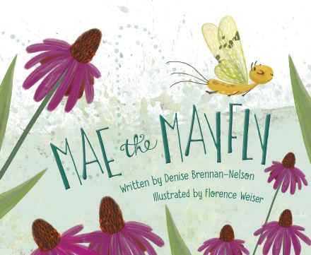 celebrate-picture-books-picture-book-review-mae-the-mayfly-cover