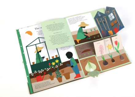 celebrate-picture-books-picture-book-review-in-the-garden-open-shed