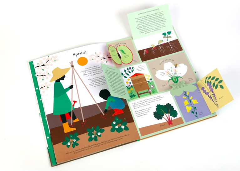 celebrate-picture-books-picture-book-review-in-the-garden-open-spring