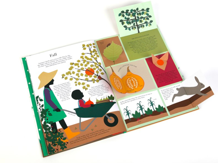 celebrate-picture-books-picture-book-review-in-the-garden-open-fall