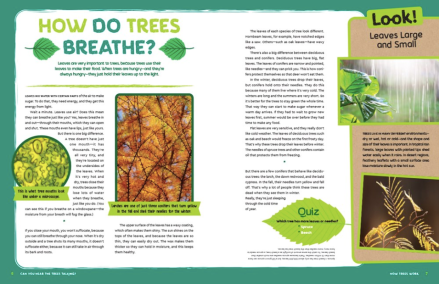 Screen Shot 2020-04-23 at 4.23.16 PMcelebrate-picture-books-picture-book-review-can-you-hear-the-trees-talking-breathe