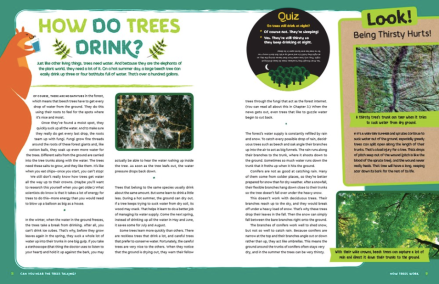 celebrate-picture-books-picture-book-review-can-you-hear-the-trees-talking-drink