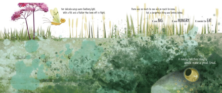 celebrate-picture-books-picture-book-review-mae-the-mayfly-fish