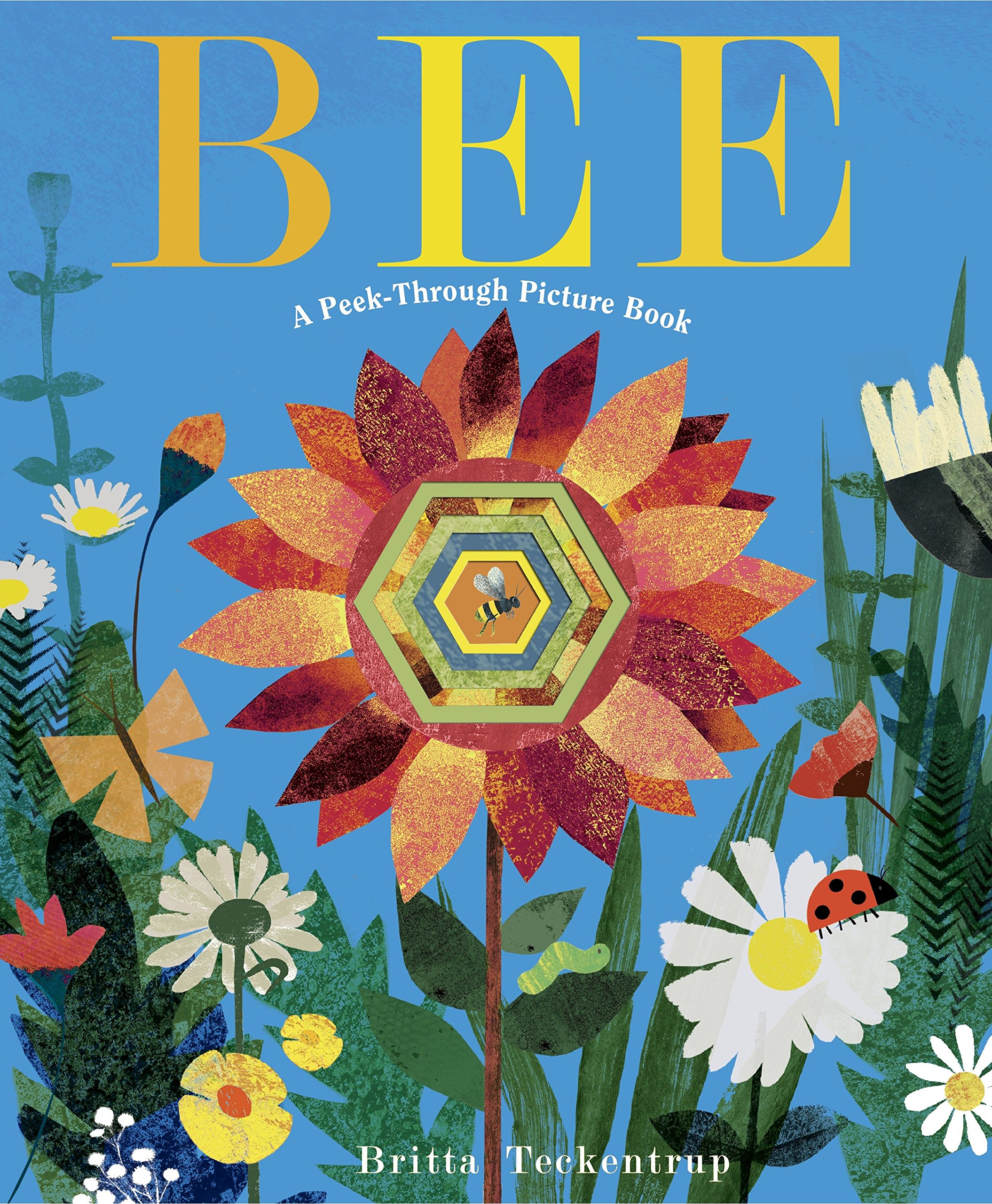 celebrate-picture-books-picture-book-review-bee-a-peek-through-picture-book-cover