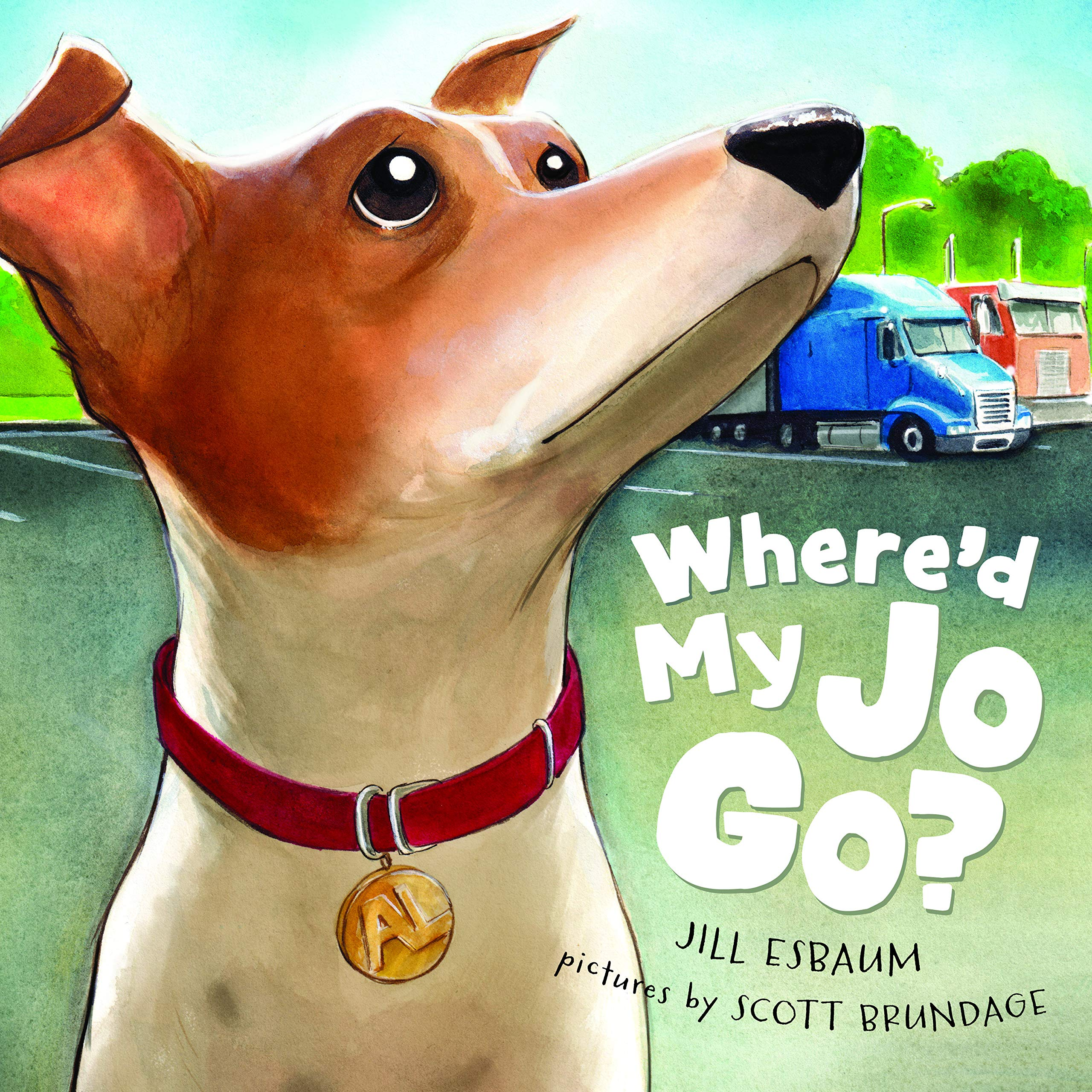 celebrate-picture-books-picture-book-review-where'd-my-jo-go-cover