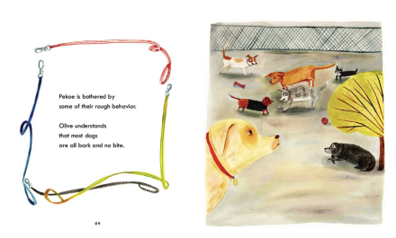 celebrate-picture-books-picture-book-review-olive-and-pekoe-walk-dog-park