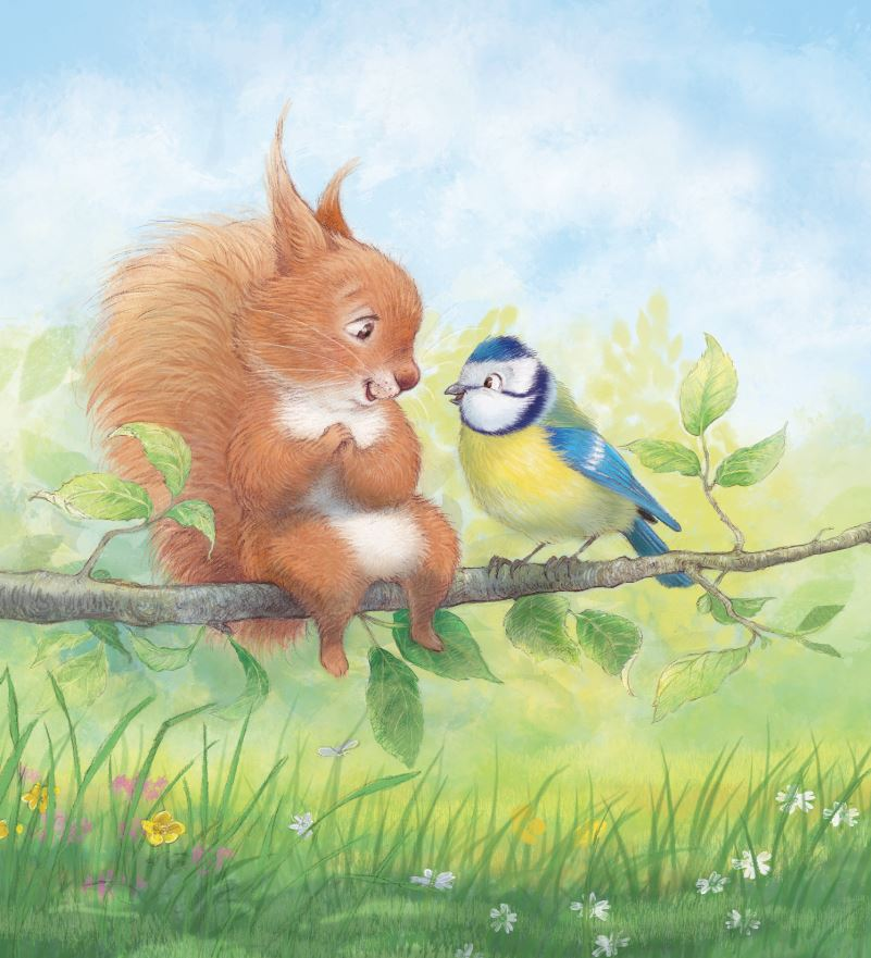 celebrate-picture-books-picture-book-review-Petra-Brown-interview-red-squirrel