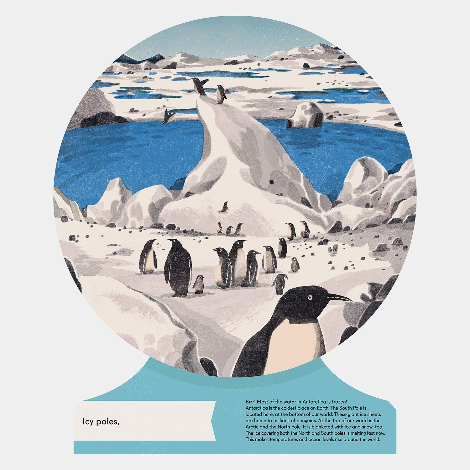 celebrate-picture-books-picture-book-review-our-world-antarctica